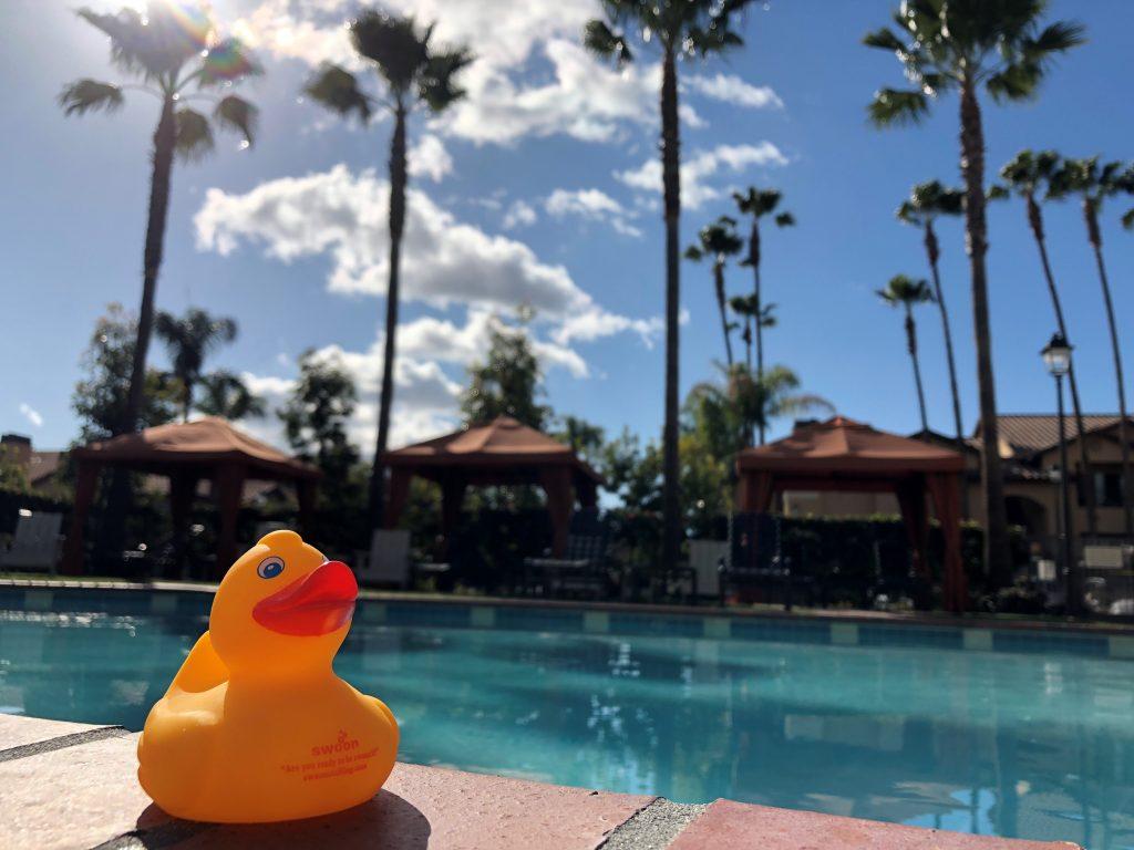 San Diego pool